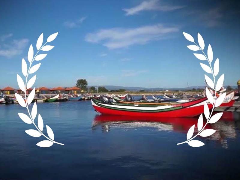 Murtosa: Melhor filme europeu pelo público no festival promovido European Museum Academy